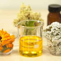 Phyto Serum And Plant Medicine